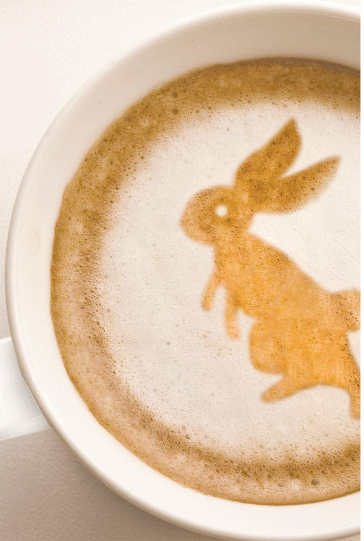 Irresistible tentación de tomar café con animales