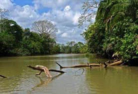 Costa Rica en deuda con la conservación de humedales