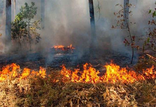 201302121201091.incendio.jpg