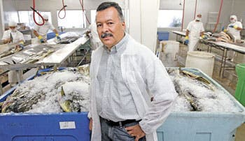 Repunta exportación de pescado