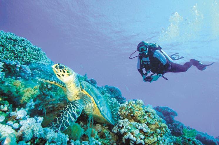 Más turistas conscientes, más oferta verde