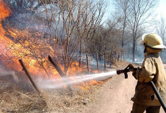 Preocupa aumento de incendios forestales