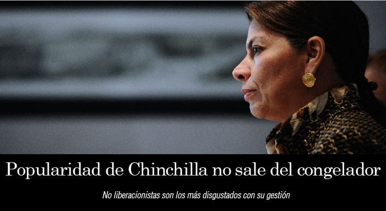 Popularidad de Chinchilla no sale del congelador