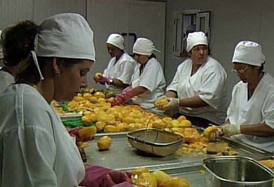 TEC capacitará a Mipymes en procesamiento de Frutas