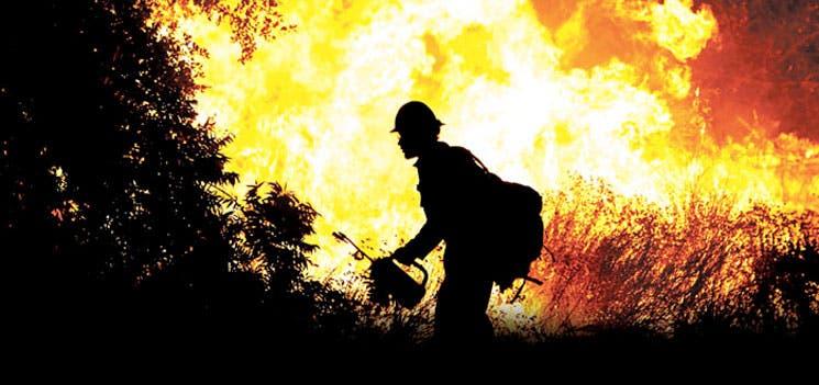 Fuego se come los bosques