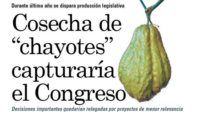 """Cosecha de """"chayotes"""" capturaría el Congreso"""