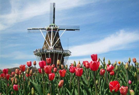Exhibición sobre innovación holandesa