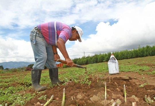 Autoridades inspeccionan anomalías en Guanacaste