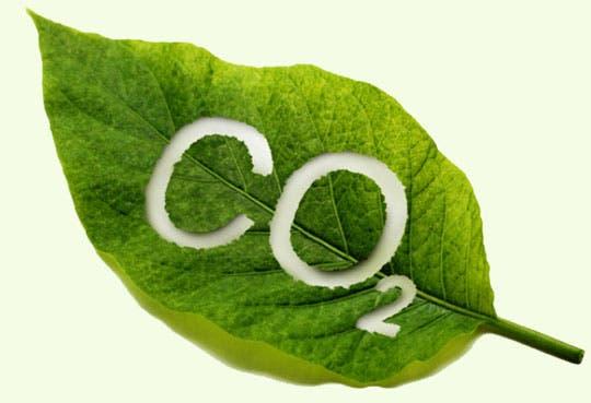 Firmarán acuerdo para caldera ambiental