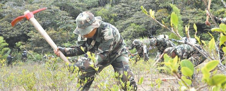 OEA debatirá sobre nuevas rutas contra narcotráfico