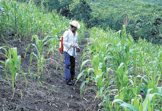 201306060928271.desarrollo-rural.jpg