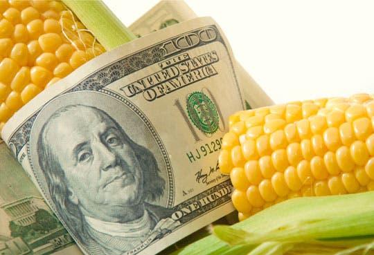 Banco Mundial apoyará más programas de nutrición
