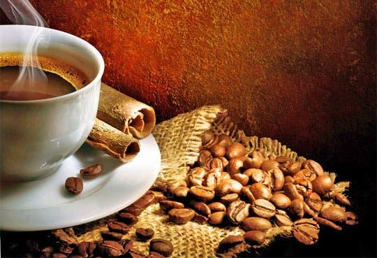Escuela sobre café abrirá en el país
