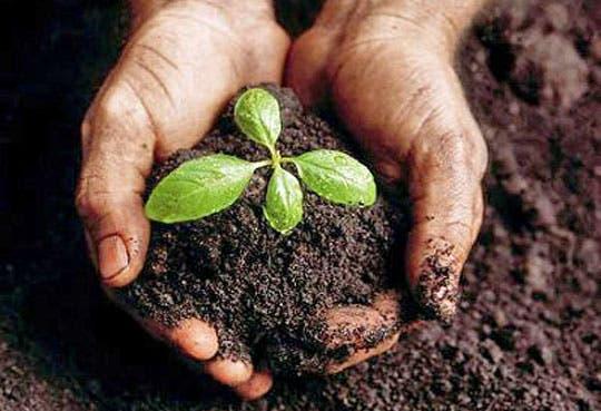 201306171006581.ambientalistas.jpg