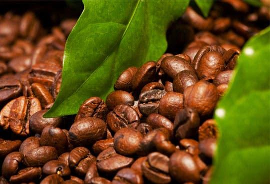 Café presente en Exphore