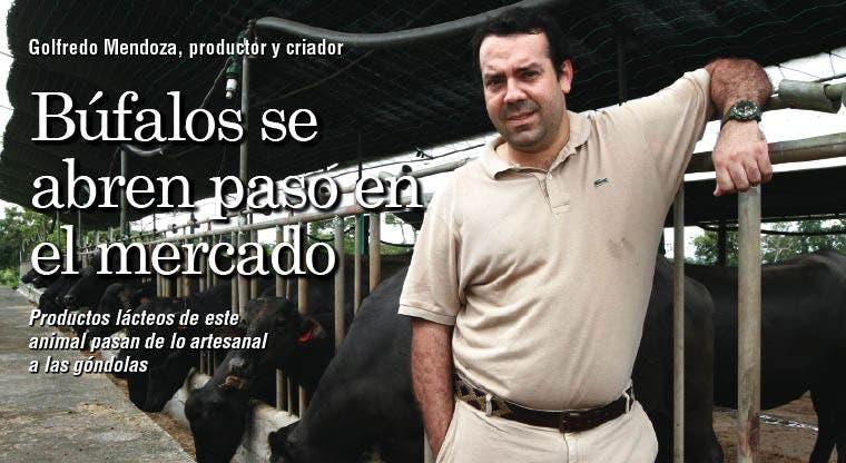 Búfalos se abren paso en el mercado