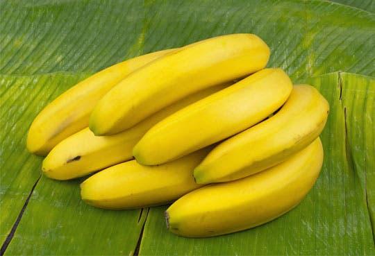 Casi 100% de sector bananero trata sus desechos