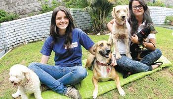 Al servicio de los animales