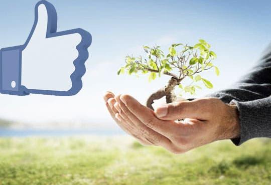 """Cada """"like"""" es un árbol para el Centro Cultural"""