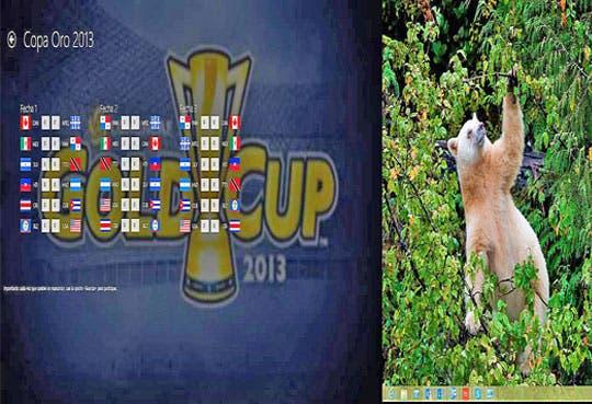 Siga la Copa Oro con aplicación tica