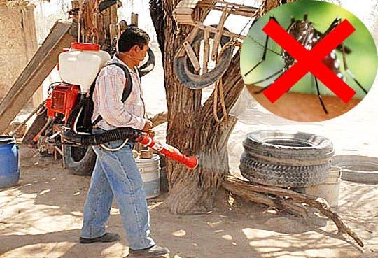 201307090916201.dengue-lucha.jpg