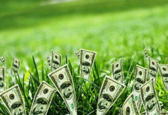Asista al Foro de Microfinanzas verdes