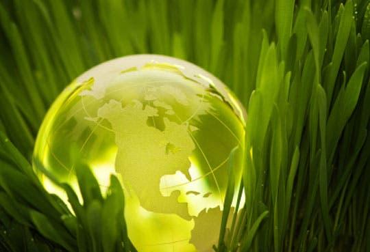 Foro buscará reducción de huella ecológica