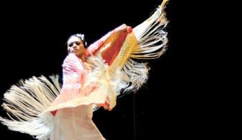 Flamenco tiene espacio propio