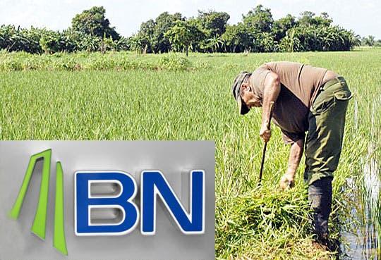 Lanzan BN Agro Banca