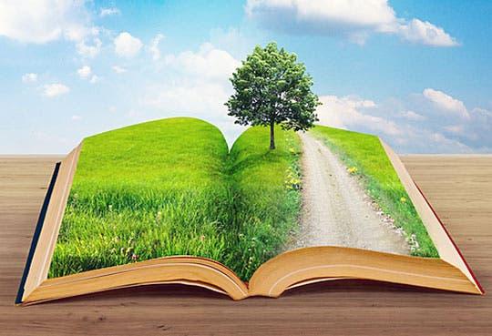 201308211201101.bosque-escuela.jpg