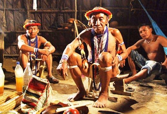 201309020848491.indigenas-venezolanos.jpg