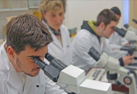 201309020928511.investigaciones-biomedicas.jpg