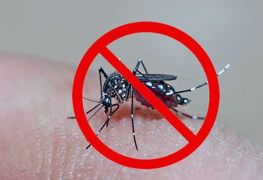 Campaña contra el dengue en Zapote