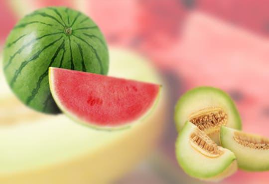 Nuevas variedades de melón y sandía