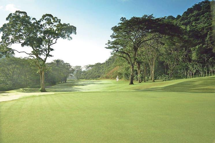 Golf sin reglas