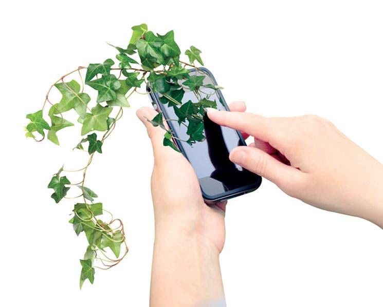 Cuide el ambiente desde su móvil