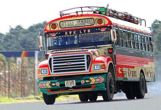 201311131724571.bus-web.jpg