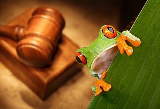 Urge cambio en leyes ambientales