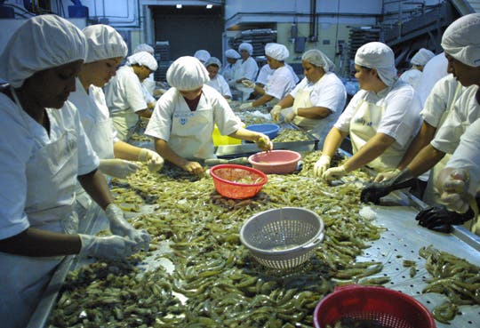 Pescadores exigen apoyo a candidatos