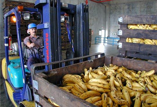 Congreso Internacional del Banano en Costa Rica