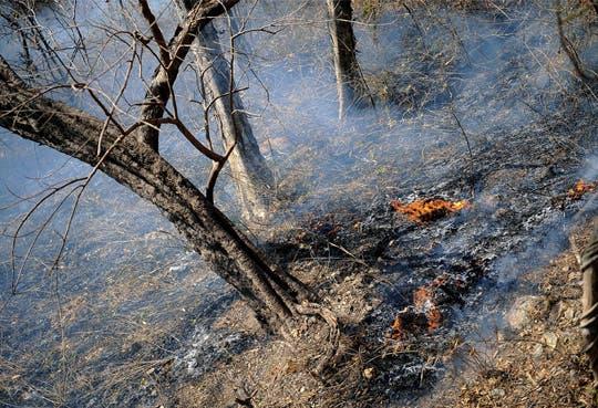 2013 cerró con más incendios forestales