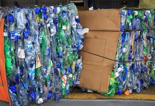 Palmares dejó 12,5 toneladas de reciclaje