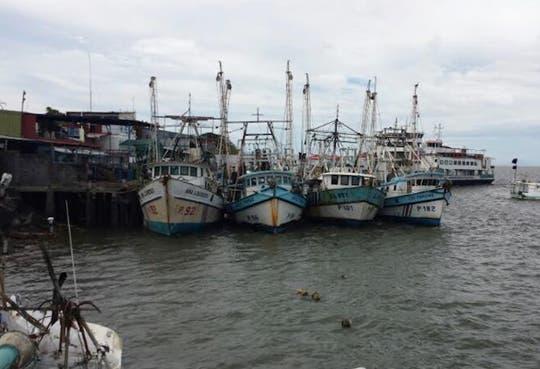 Prohibición de pesca ataca a comerciantes