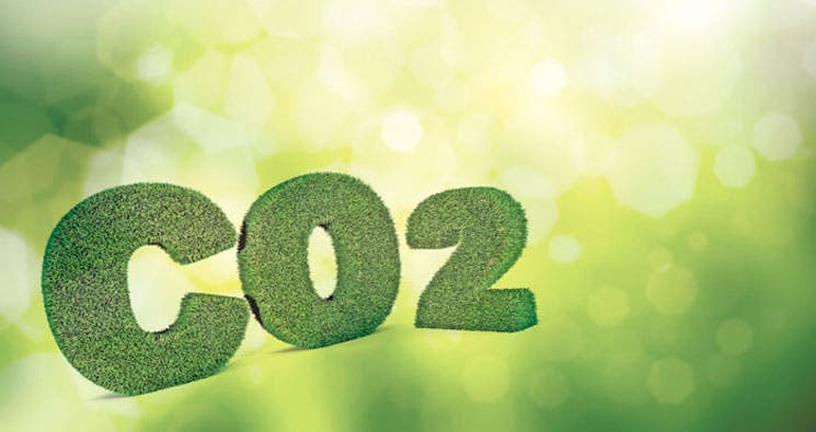 Camino a la meta de 2021