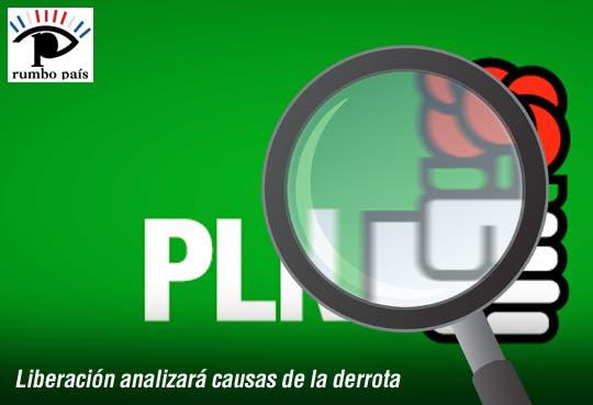 PLN entra en análisis profundo