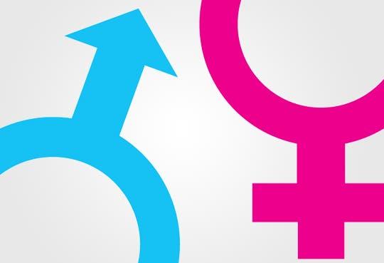 """Desventaja femenina internacional"": ONU"