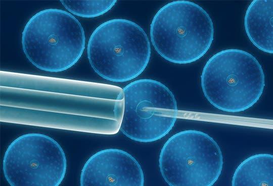 Investigaciones Biomédicas, sin dictamen de Sala