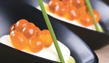 Gastronomía conceptual
