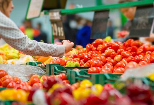 Crisis en industria alimentaria por lentitud en trámites