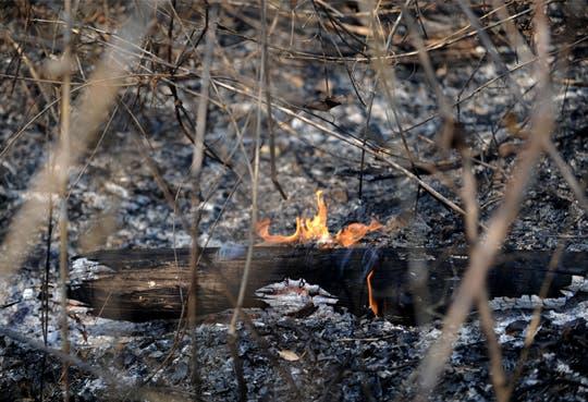 Incendio consumió 8 hectáreas de Parque Nacional